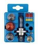 Набор ламп Tesla (H1+R5W+P21W+P21/5W+PY21W+W5W+предохр.)